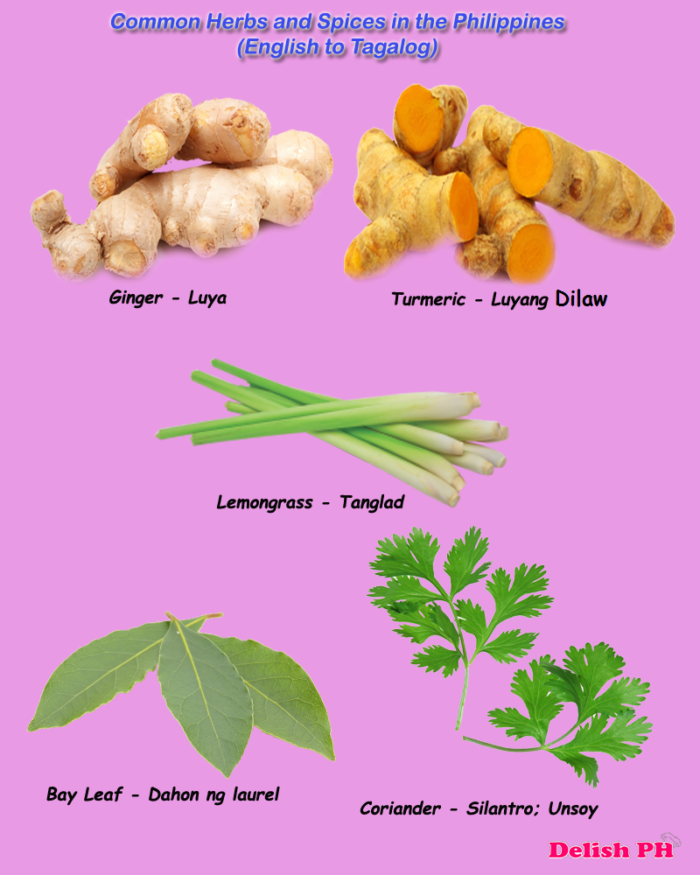 10 common herbal medicine in philippines • study on essential oils showed b-caryophyllene common to philippines, college of medicine nursing-notes/herbal-medicine-lagundi 10.